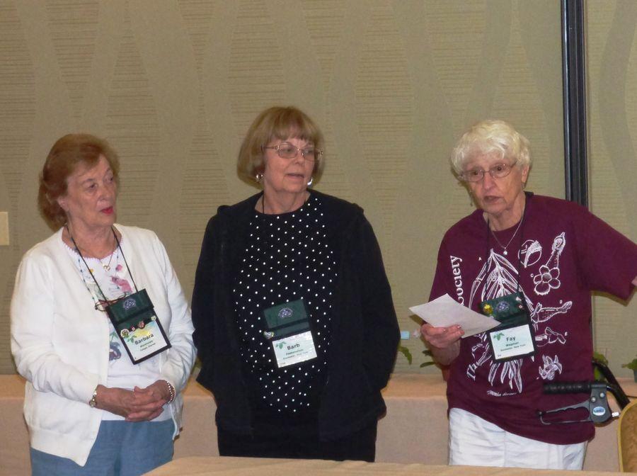 Team Barbara Matthews, Barb Festenstein, Fay Wagman