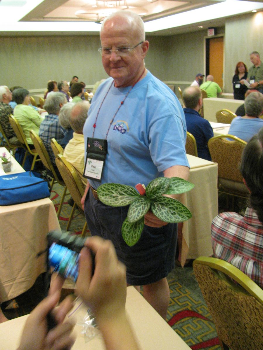 Paul Kroll helping show the practice-judged plants
