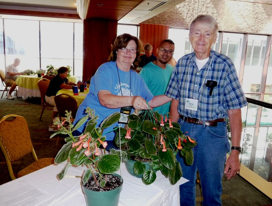 Flower Show Entries aide Mary Schaeffer assisting first-time exhibitor Larry Force