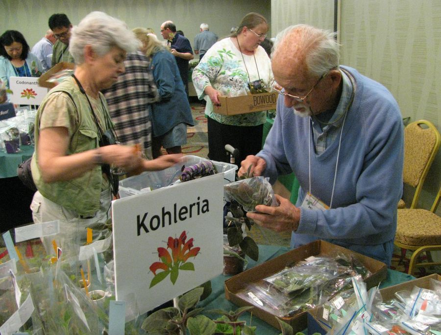 Susan Grose and Michael Kartuz making their decisions on what to buy