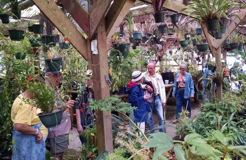 Visiting the propagation greenhouses