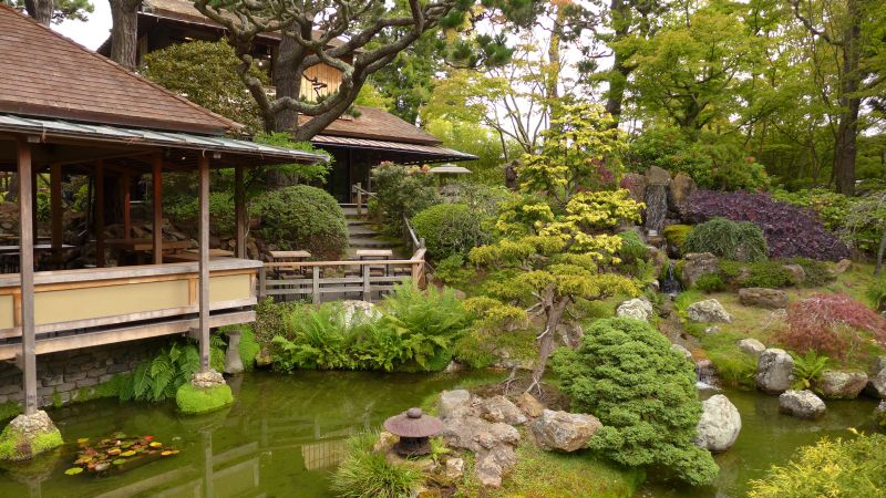 Individual group visits to the Japanese Garden