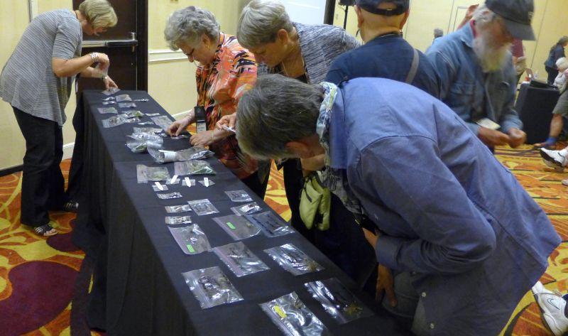 Making selections of giveaways at the GHA meeting
