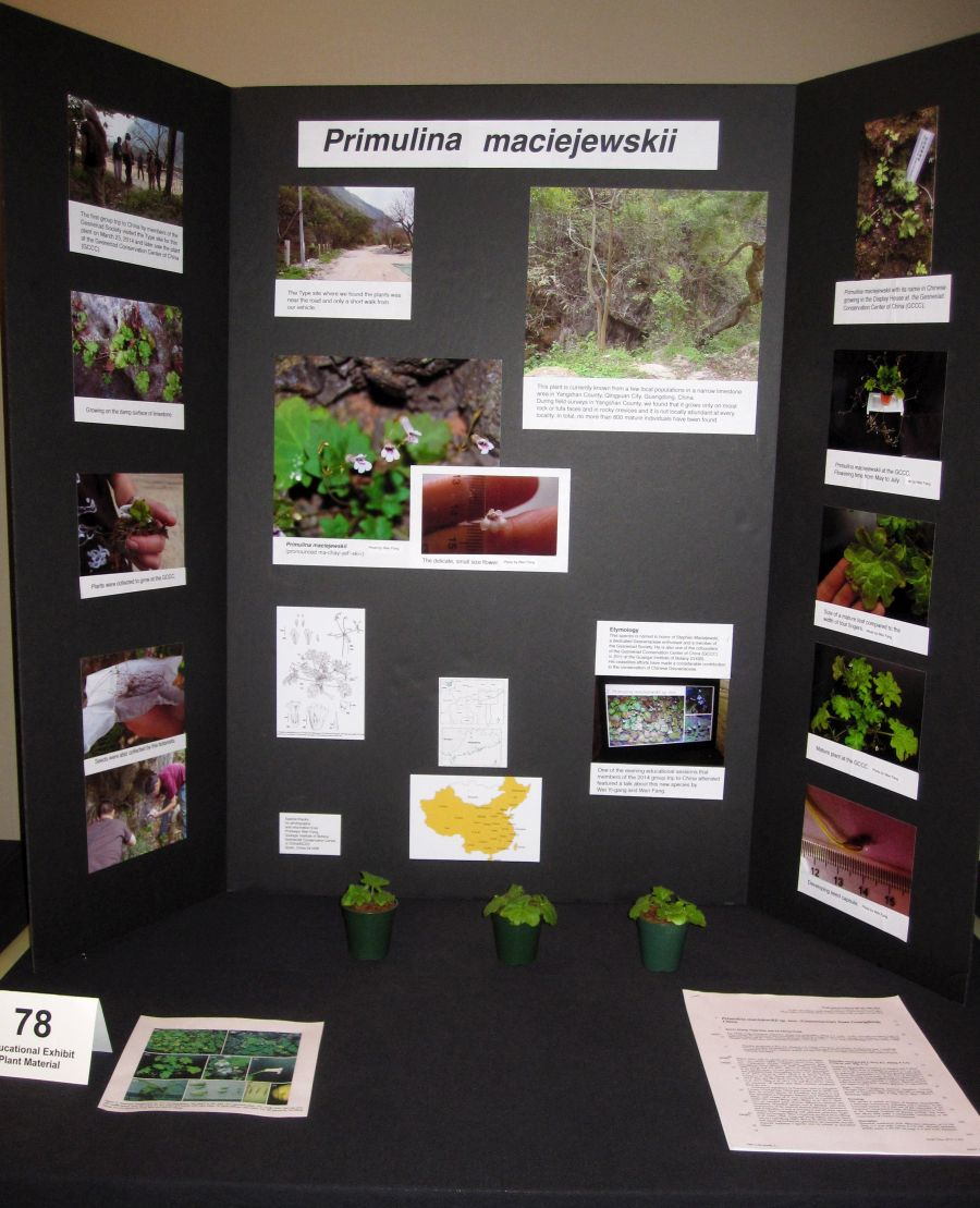 2016 Convention<br>Educational Exhibits<br>Class 78 Exhibit of plant material with educational information<br>BEST COMMERCIAL/EDUCATIONAL<br<BEST IN SECTION S – EDUCATIONAL