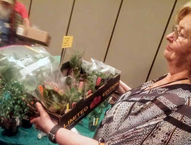 Mary Schaeffer stocks up