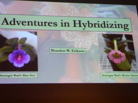 "The GHA program ""Adventures in Hybridizing"""