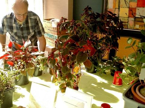 Charles Huston grooming plants in his educational exhibit