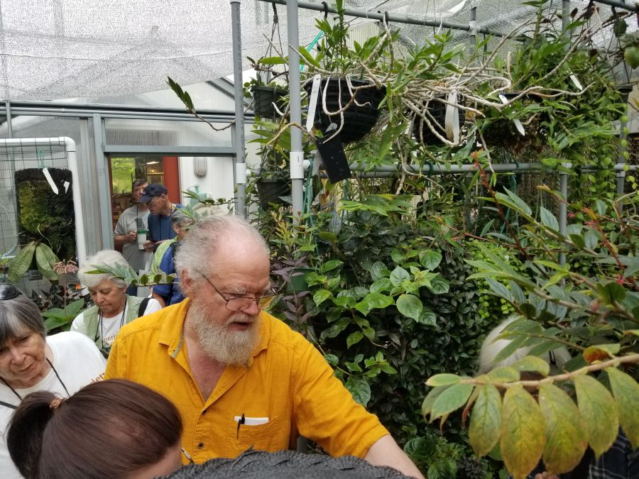 More to see in the greenhouses