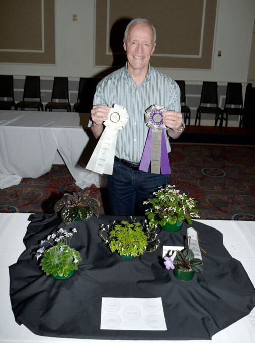 Bill Price with his Best in Horticulture Collection of primulinas