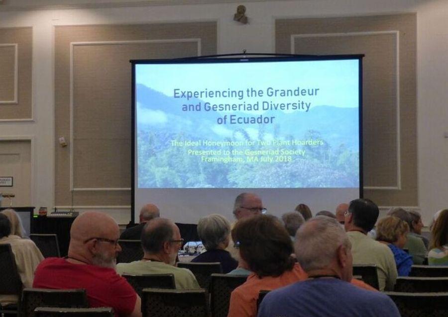 "Lecture ""Experiencing the Grandeur and Gesneriad Diversity of Ecuador"""