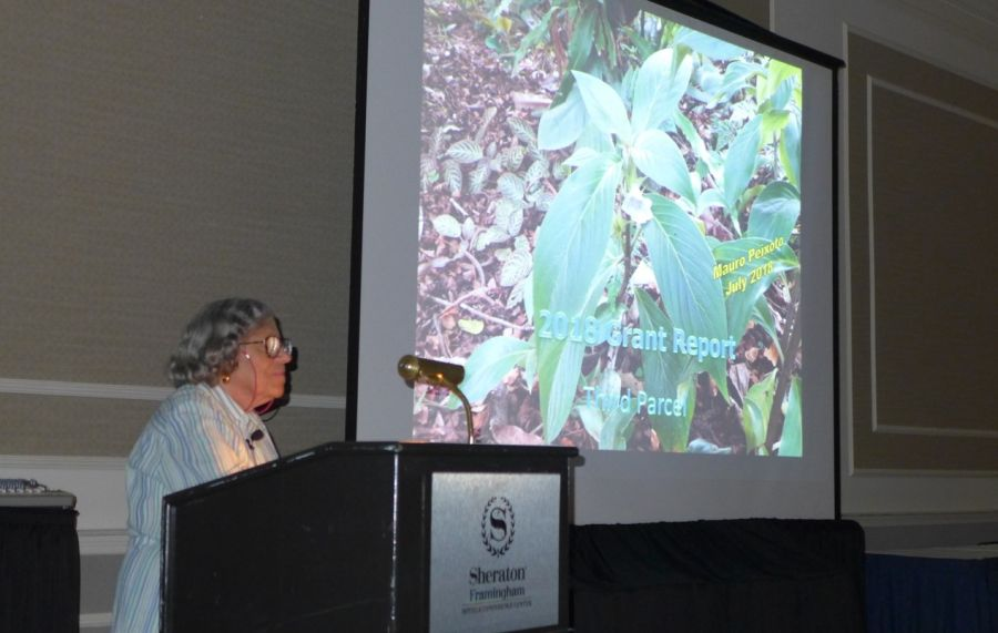 Carolyn Ripps presenting conservation report from Brazil