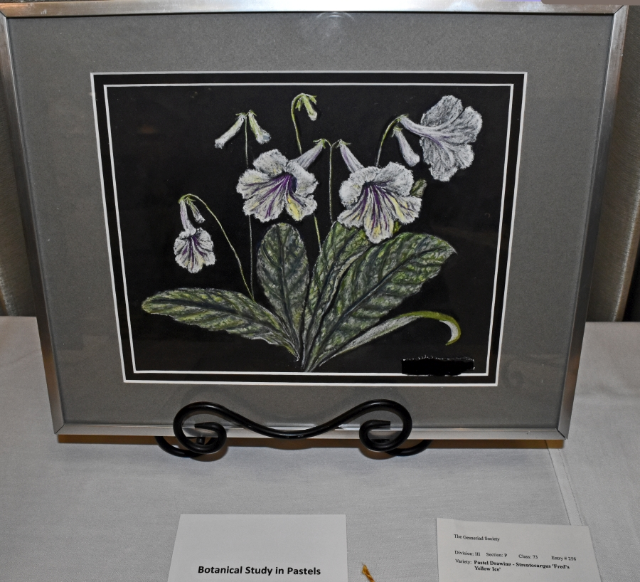 2019 Convention<br>Arts and Crafts Representing Gesneriads<br>Class 73 – Painting or drawing  <br>RUNNER-UP TO BEST IN ARTS <br>BEST IN SECTION P – ARTS AND CRAFTS REPRESENTING GESNERIADS